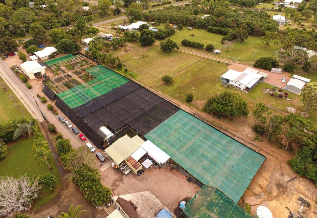 Townsville Plant Wholesalers