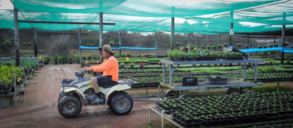 Townsville Plant Wholesalers - Delivery